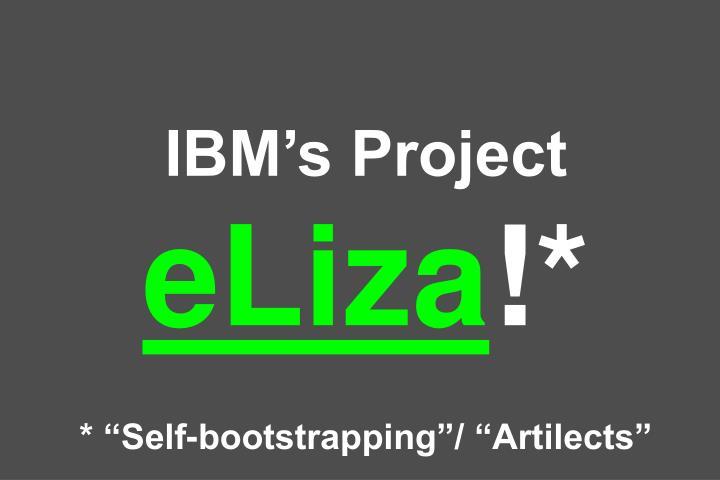 IBM's Project