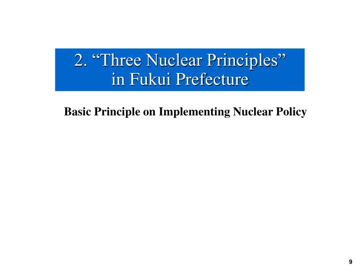 "2. ""Three Nuclear Principles"""