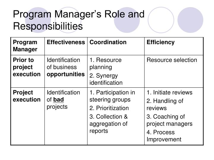 Program Manager's Role and Responsibilities