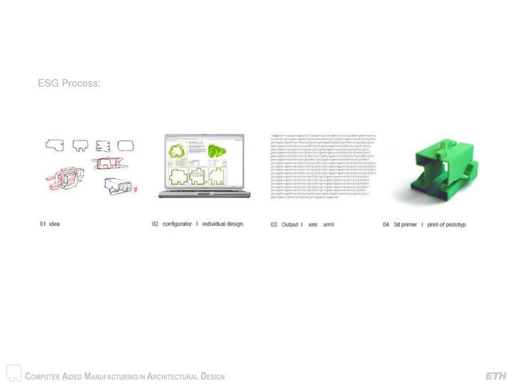 ESG Process: