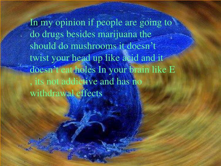 In my opinion if people are going to do drugs besides marijuana the should do mushrooms it doesn't twist your head up like acid and it doesn't eat holes In your brain like E , its not addictive and has no withdrawal effects