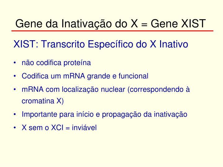 Gene da Inativação do X = Gene XIST