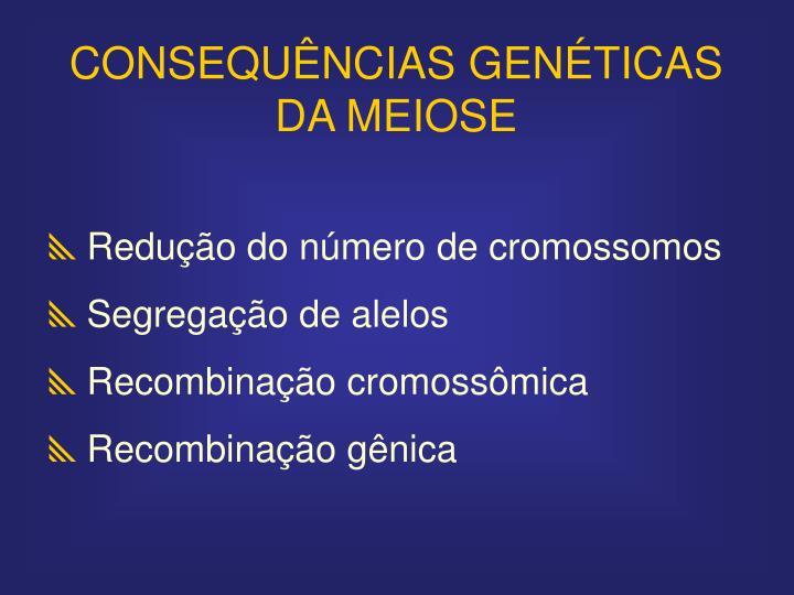 CONSEQUÊNCIAS GENÉTICAS DA MEIOSE