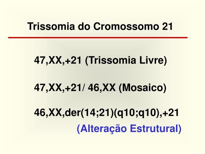Trissomia do Cromossomo 21