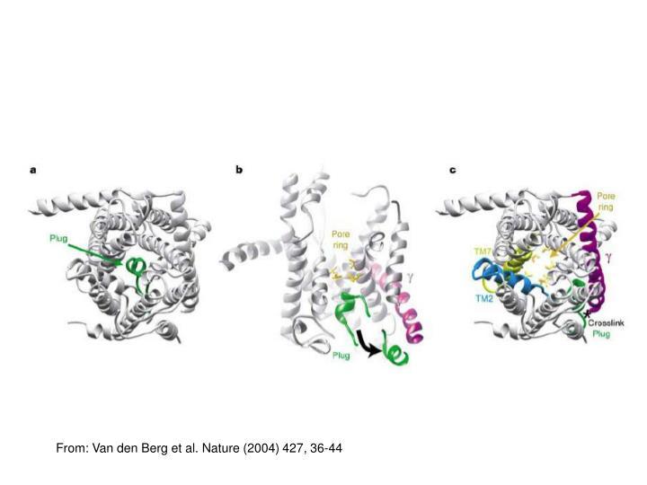 From: Van den Berg et al. Nature (2004)