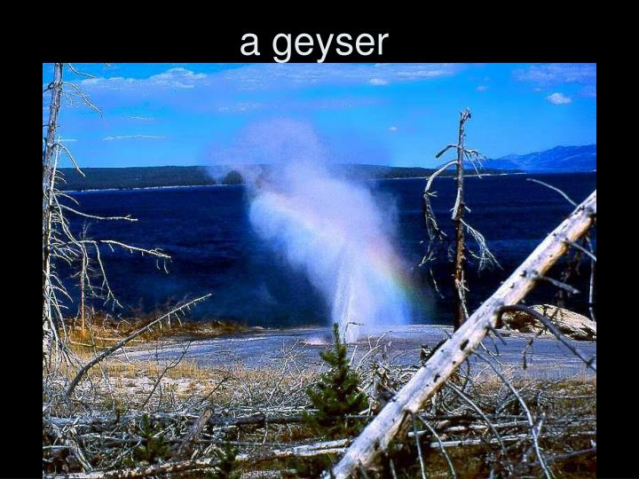 a geyser