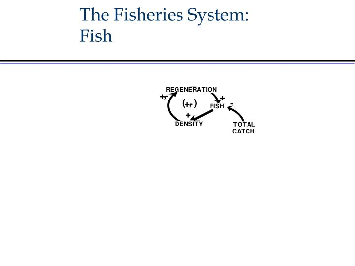 The Fisheries System: Fish