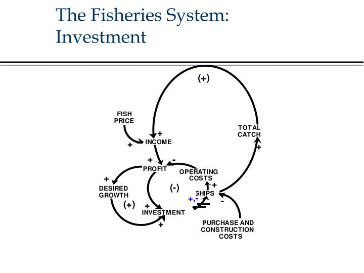 The Fisheries System: Investment