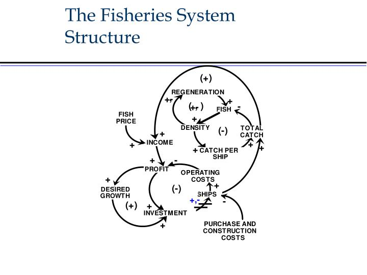 The Fisheries System Structure