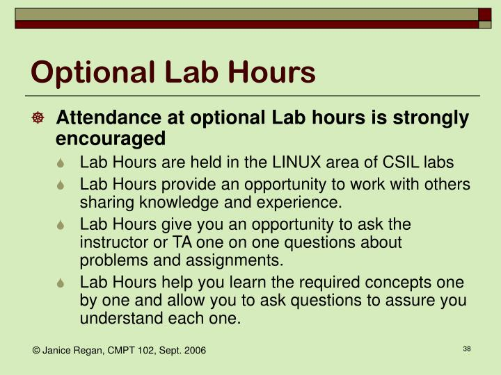 Optional Lab Hours