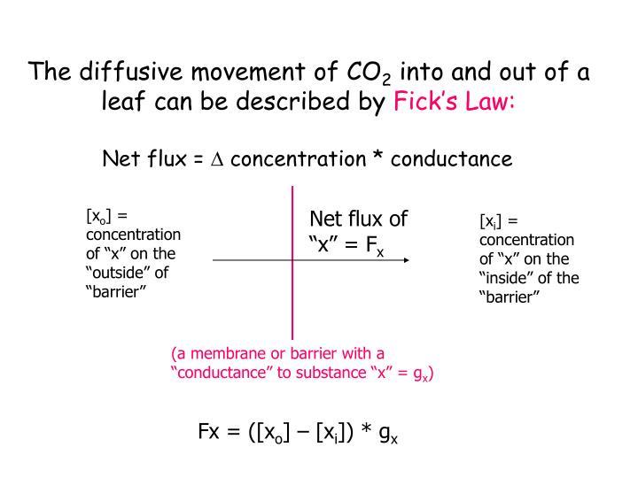 """Net flux of """"x"""" = F"""