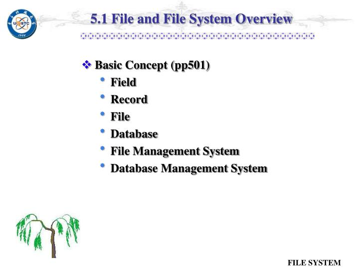 5.1 File and File System Overview