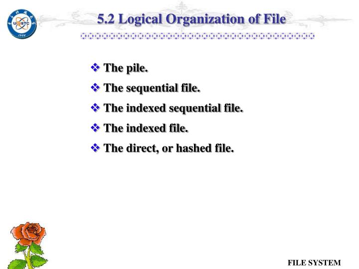 5.2 Logical Organization of File