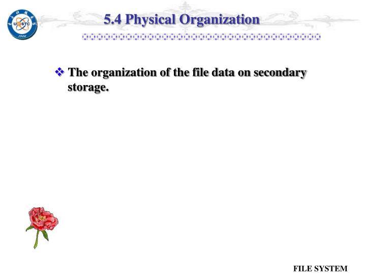 5.4 Physical Organization