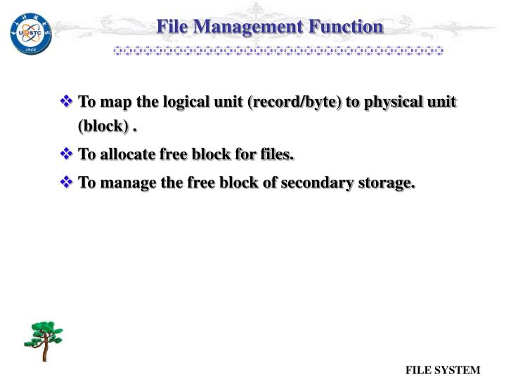 File Management Function