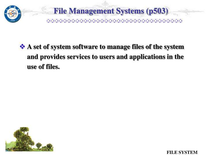 File Management Systems (p503)