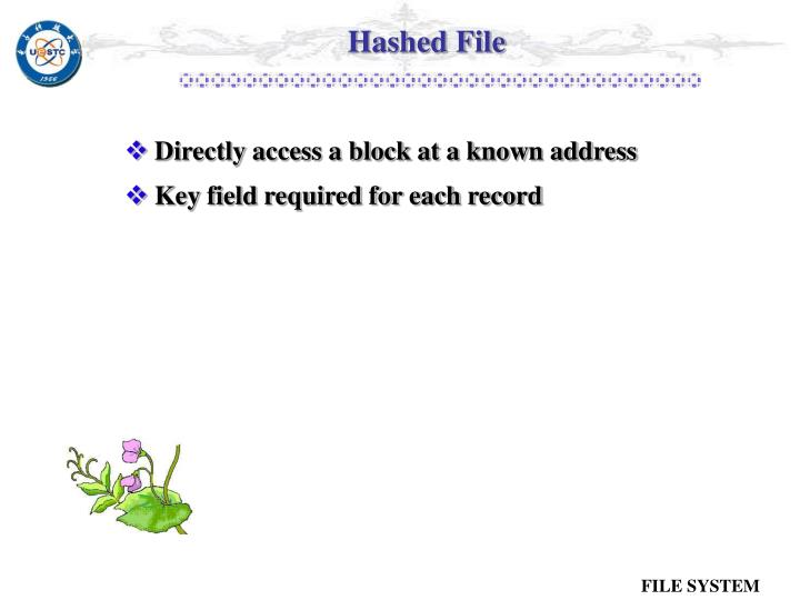 Hashed File