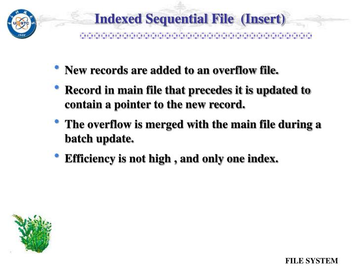 Indexed Sequential File  (Insert)