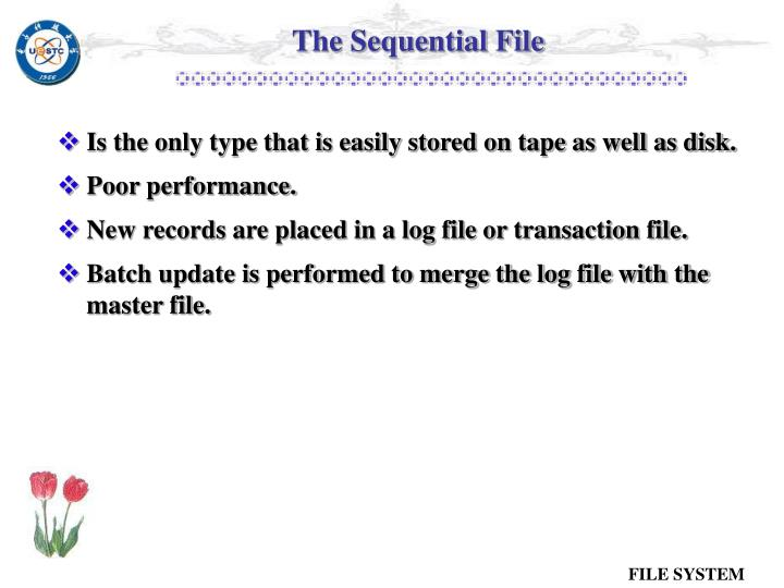 The Sequential File
