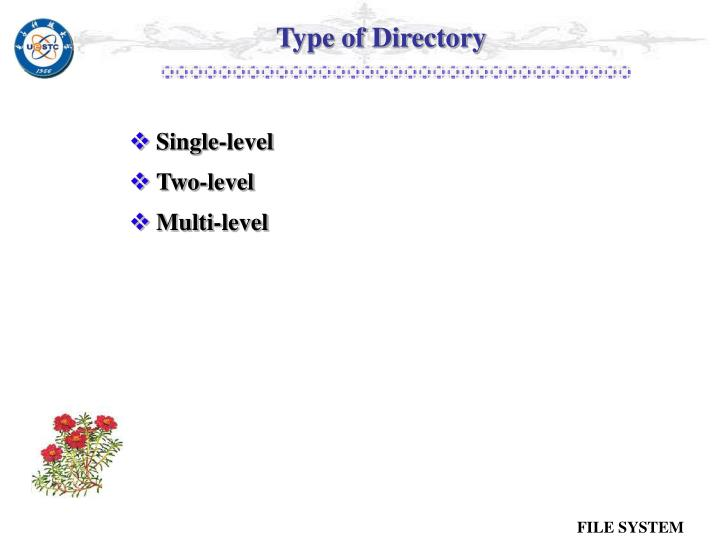 Type of Directory