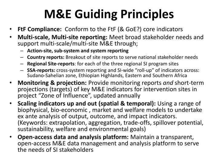 M&E Guiding Principles