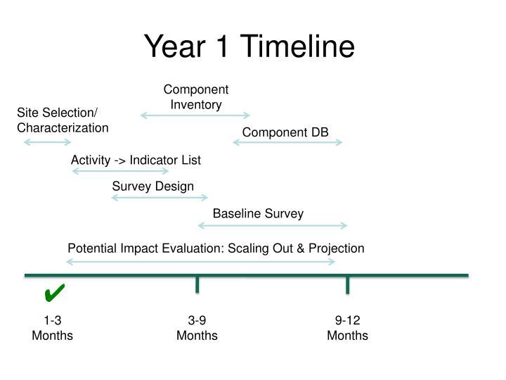 Year 1 Timeline