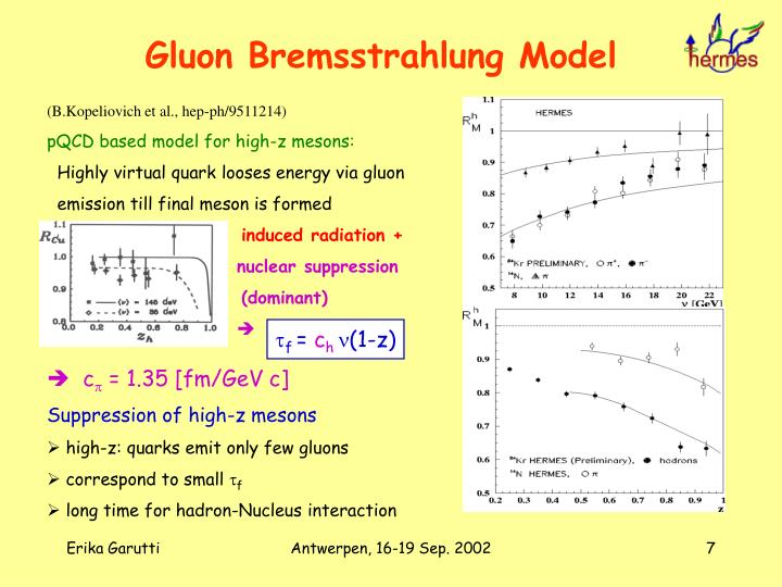 Gluon Bremsstrahlung Model