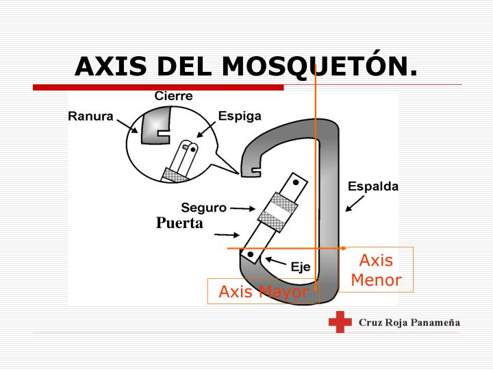 Axis Menor