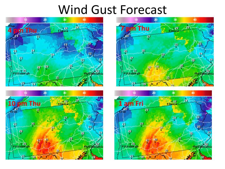 Wind Gust Forecast