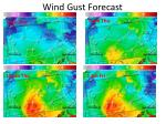wind gust forecast1