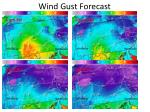 wind gust forecast2