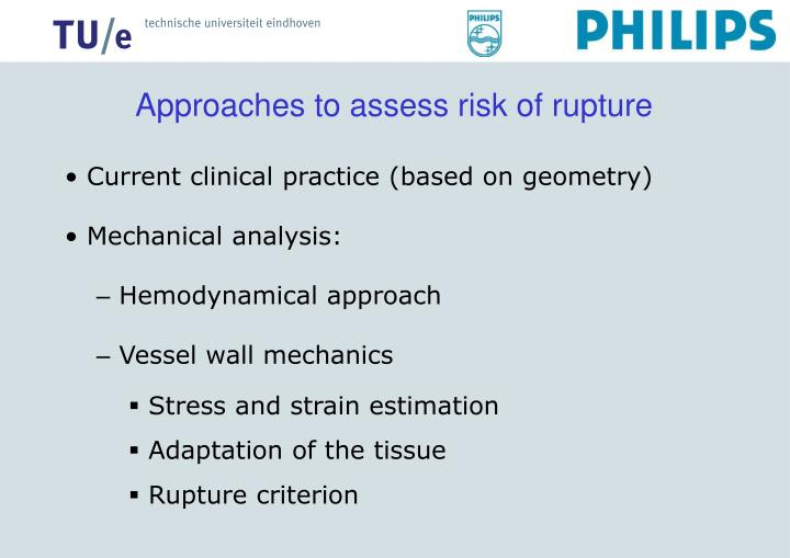 Approaches to assess risk of rupture