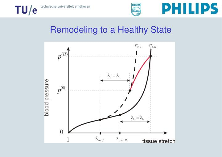 Remodeling to a Healthy State