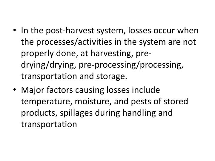 In the post-harvest system, losses occur when the processes/activities in the system are not properly done, at harvesting, pre-drying/drying, pre-processing/processing, transportation and storage.