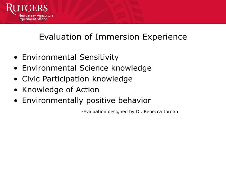 Evaluation of Immersion Experience