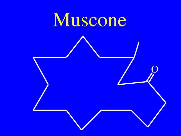 Muscone