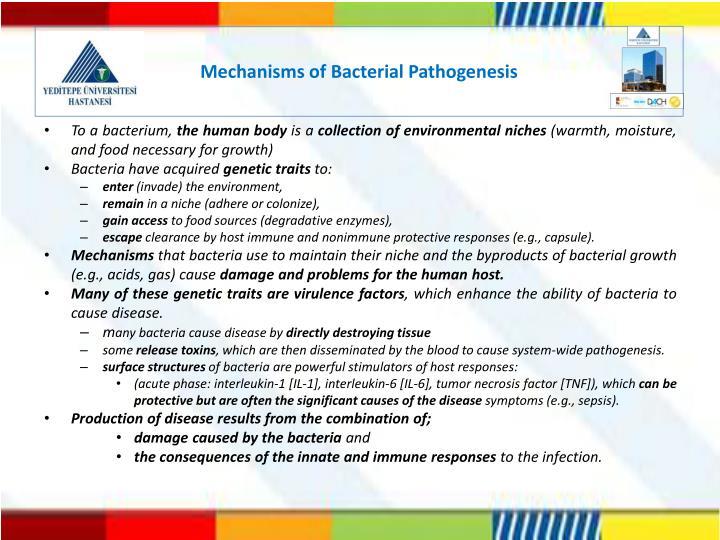 Mechanisms of Bacterial Pathogenesis