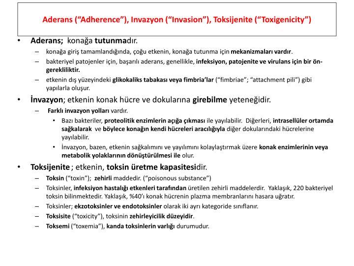 "Aderans (""Adherence""), Invazyon (""Invasion""), Toksijenite (""Toxigenicity"")"