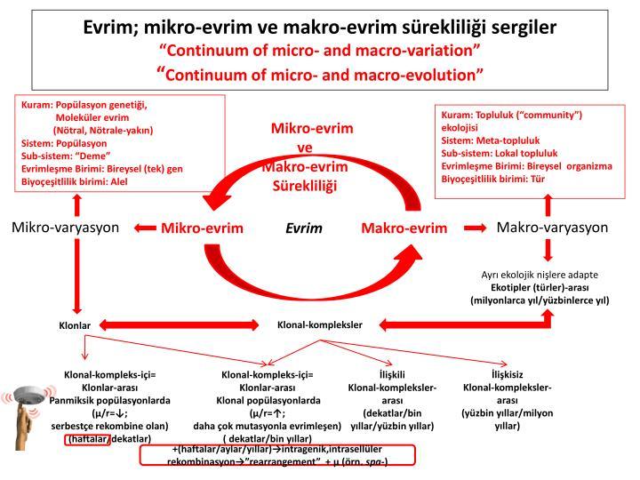 Evrim; mikro-evrim ve makro-evrim sürekliliği sergiler
