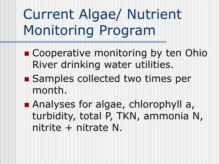 Current Algae/ Nutrient Monitoring Program