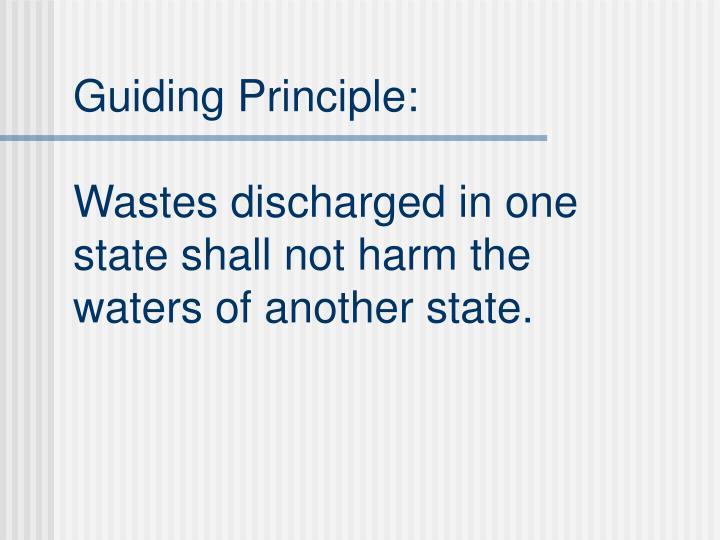 Guiding Principle: