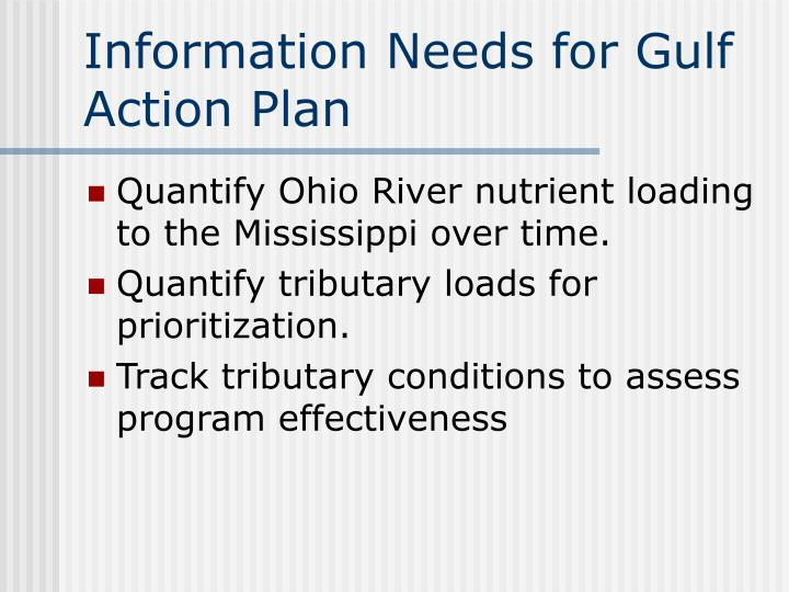 Information Needs for Gulf Action Plan
