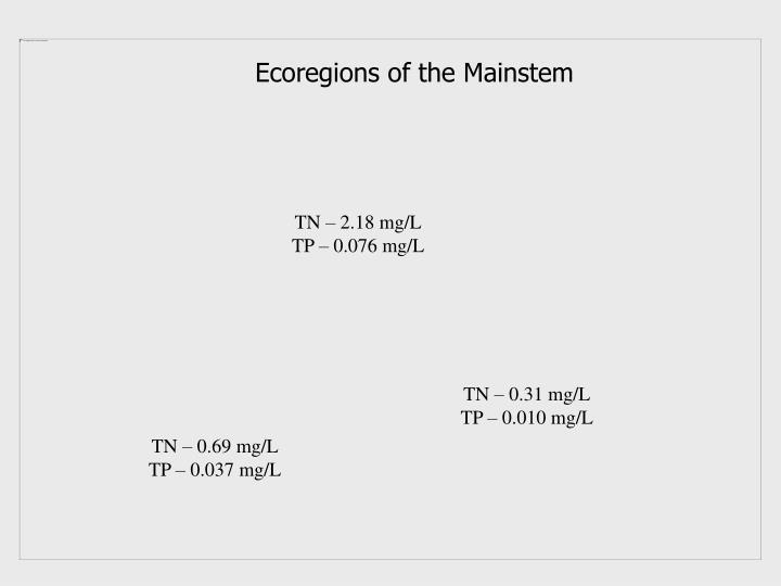 Ecoregions of the Mainstem