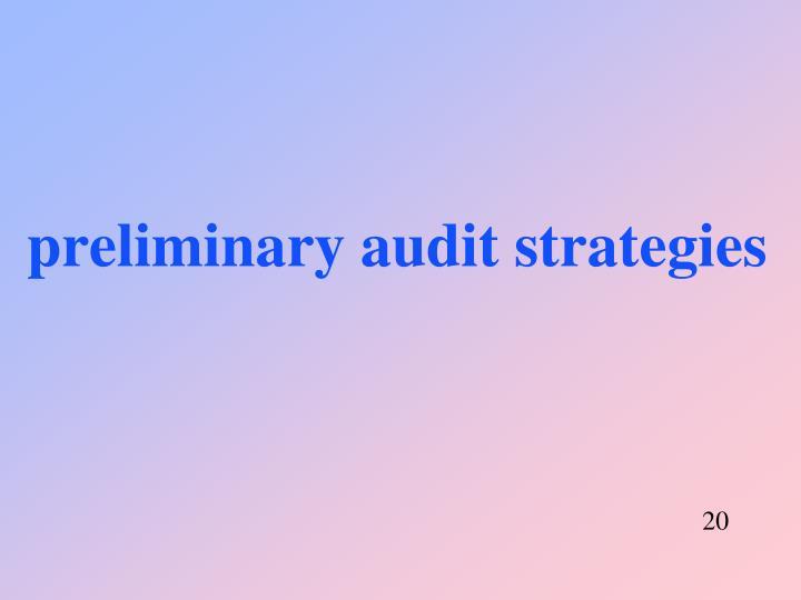 preliminary audit strategies