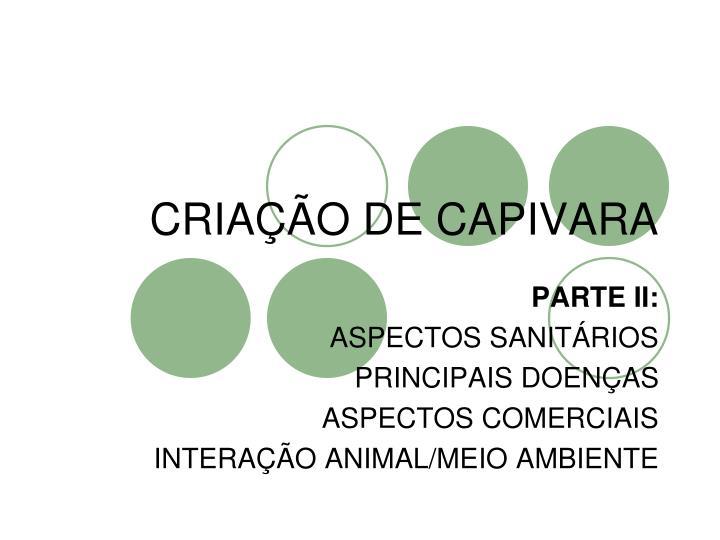 CRIAÇÃO DE CAPIVARA