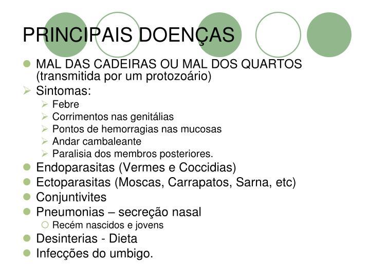 PRINCIPAIS DOENÇAS
