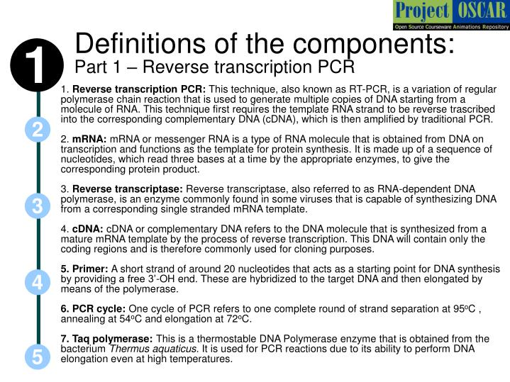 Definitions of the components part 1 reverse transcription pcr