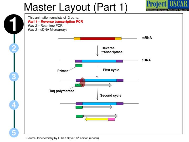 Master layout part 1
