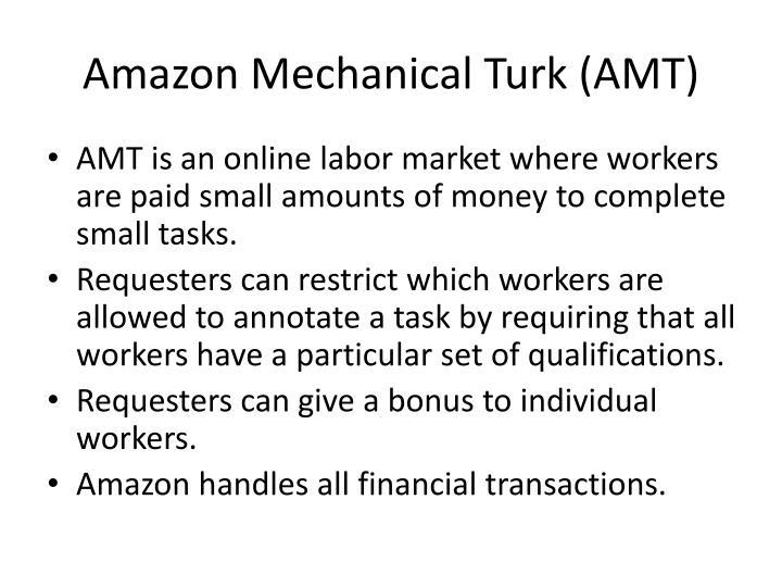 Amazon Mechanical Turk (AMT)