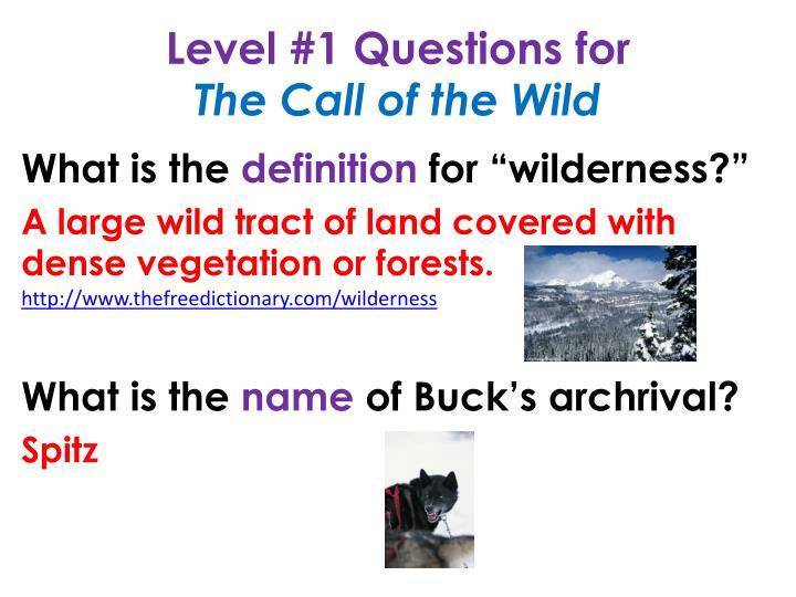 Level #1 Questions for